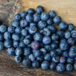 I frutti di bosco, l'importanza nella corsa